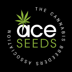 ACESEEDS 1