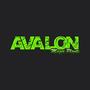 avalon-magic-plants