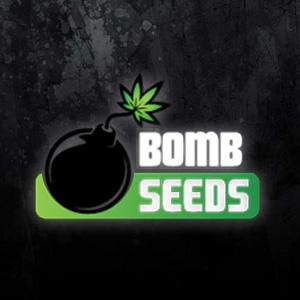 BOMB SEEDS BLACK 2