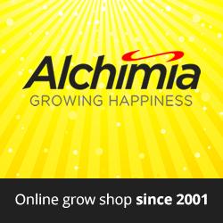 Banner250x250Alchimia