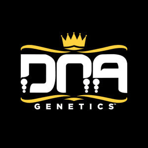 DNA GENETICS DISCOUNT