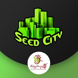 DR KRIPPLING SEED CITY