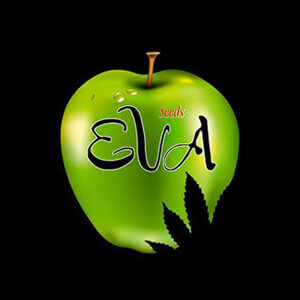 EVA SEEDS DISCOUNT CODE
