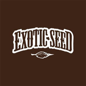 EXOTIC SEED DISCOUNT