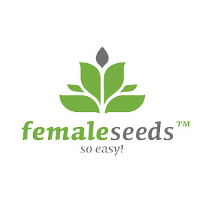 FEMALE SEEDS DISCOUNT