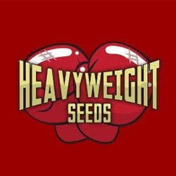 HEAVYWEIGHT SEEDS RED LOGO 1