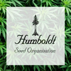 HUMBOLDT SEEDS FREEBIES