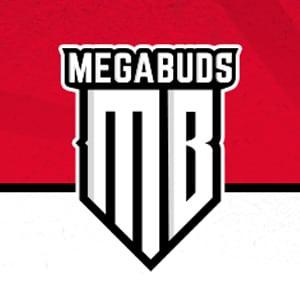 MEGABUDS DISCOUNT