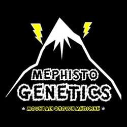 MEPHISTO GENETICS 1