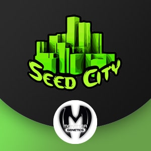 MONSTER GENETICS SEED CITY