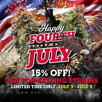 MSNL JULY 4th SALE