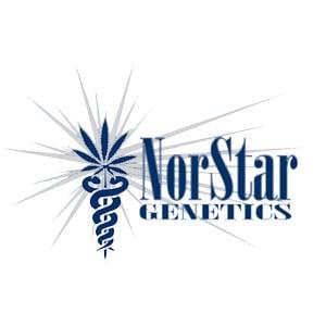 NORSTAR GENETICS DISCOUNT