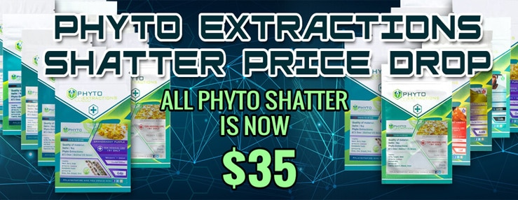 PHYTO SHATTER DISCOUNT