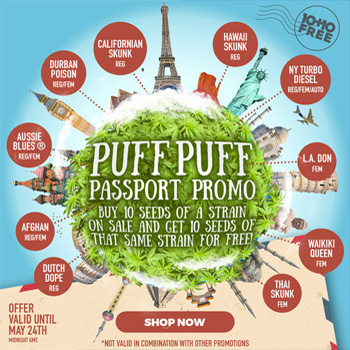 PUFF PUFF PASSPORT coupon code