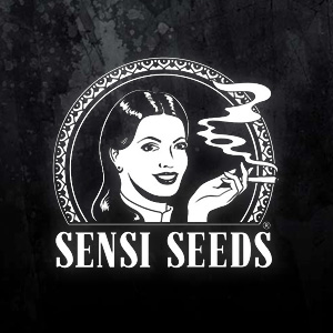 SENSI SEEDS BLACK FRIDAY 2