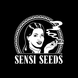 SENSI SEEDS BLACK FRIDAY DISCOUNT