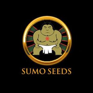 SUMO SEEDS DISCOUNT