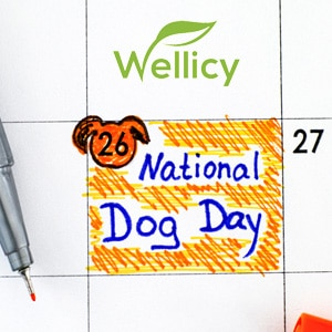 WELLICY NATIONAL DOG DAY