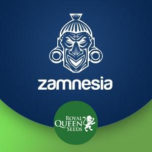 ZAMNESIA BRAND