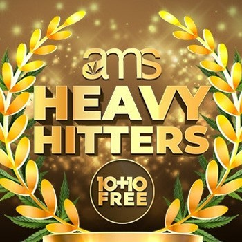ams heavy hitters discount
