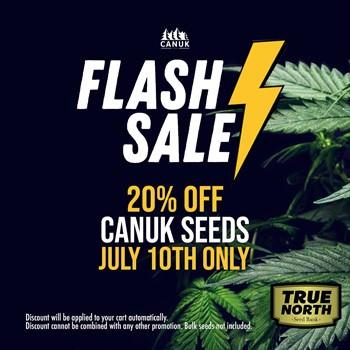 canuk seeds sale true north seedbank