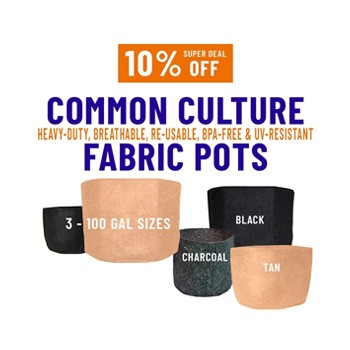 common culture fabric pots growers house