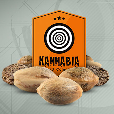 kannabia seeds discount code