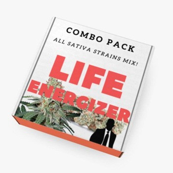 ministry of cannabis life energiser