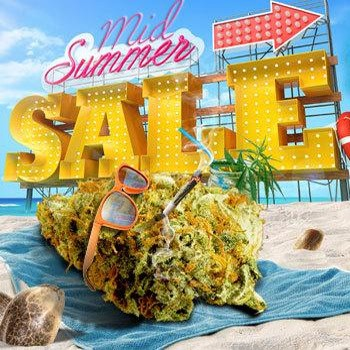 msnl mid summer sale