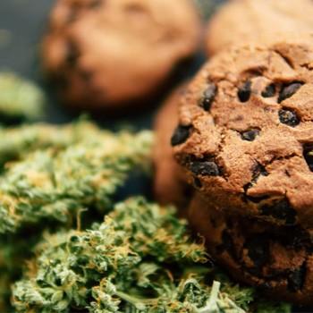 original sensible auto cookies