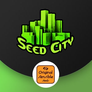 original sensible seed city