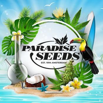 paradise seeds zamnesia coupon