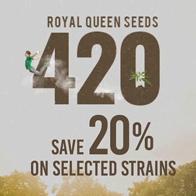 royal queen seeds discount 420