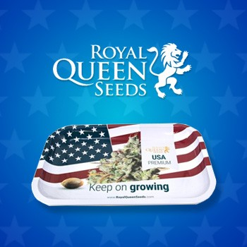 royal queen seeds free rolling tray