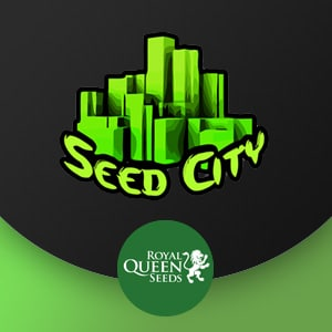 seed city discount royal queen seeds