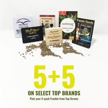 seedsman 5 plus 5 packs