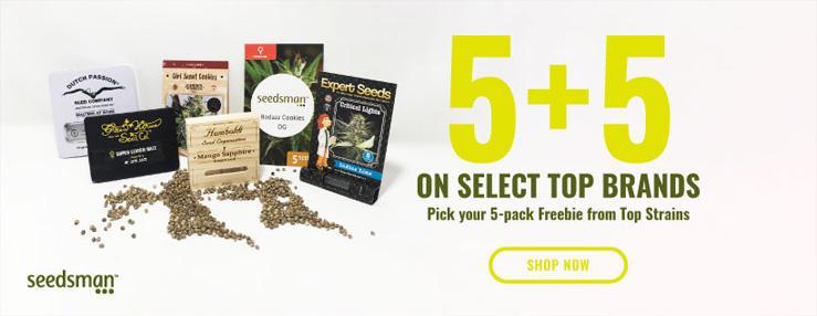 seedsman 5 plus 5