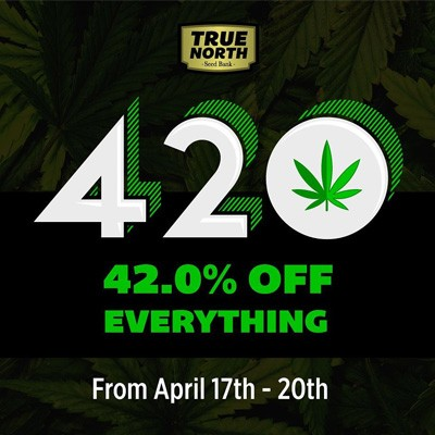 true north seedbank 420 deal