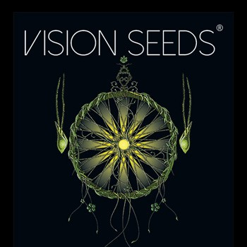 vision seeds discount